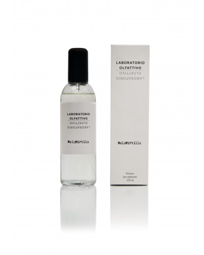 Melomirtillo 100ml